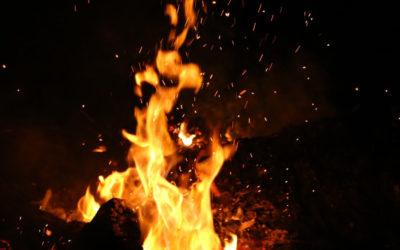 Guía de supervivencia para un mundo en llamas