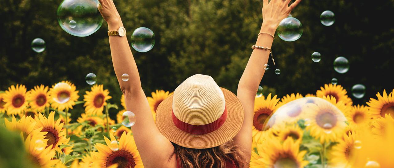 Cómo ser feliz, parte V: UNA VIDA FELIZ