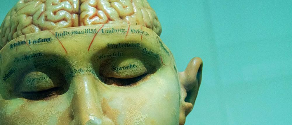 La psicología de la pandemia: Por qué algunos se la toman en serio… y otros no