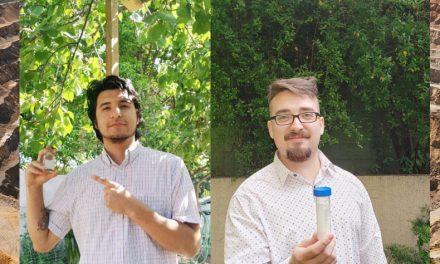 Fractal apuesta por descontaminar el aire usando nanotecnología para replicar la fotosíntesis